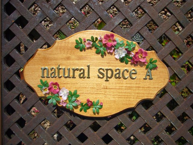 natural space A