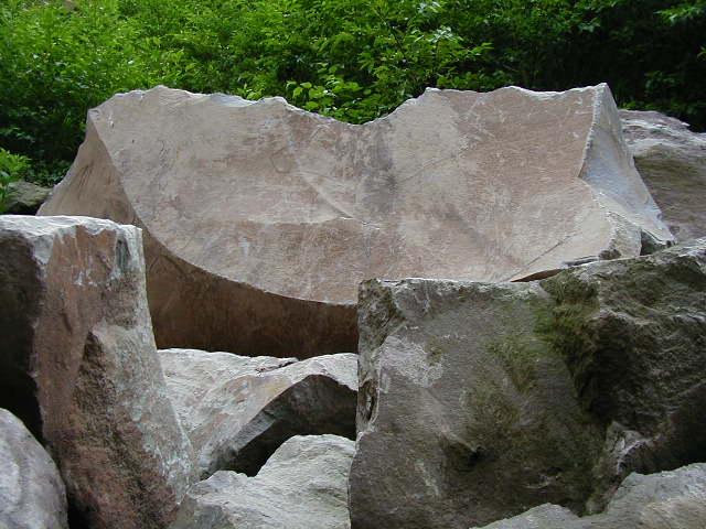 墓石の石竜